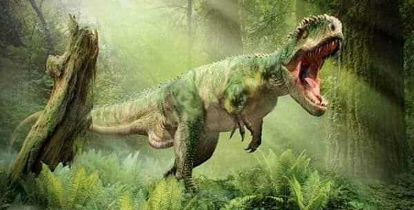 Какой ты динозавр  D2713ac5b0db524d41958608a4d3c192